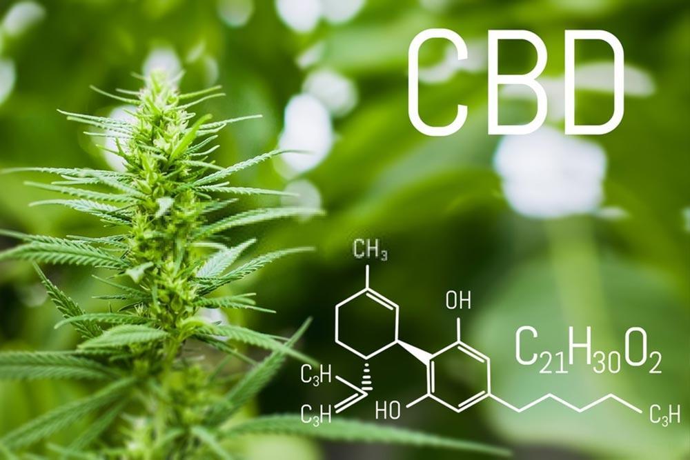cbd 1