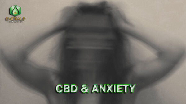 How cbd helps with anxiety
