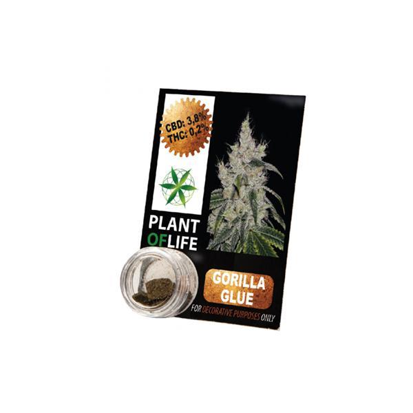 CBD Hash Gorilla Glue 3.8% - 1g