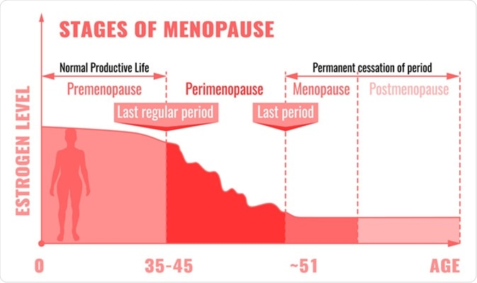 menopause stage chart